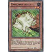 LCYW-FR235 Momonga Agile Commune