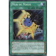 CBLZ-FR088 Mur de Magie Commune