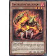 SDOK-FR014 Triceratops Volcanique Commune