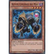 HA07-FR013 Ketos Colonie du Mal Super Rare