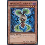 HA07-FR015 Mandragora Colonie du Mal Super Rare