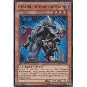 HA07-FR048 Castor Colonie du Mal Super Rare