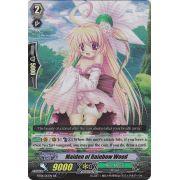 BT08/013EN Maiden of Rainbow Wood Double Rare (RR)