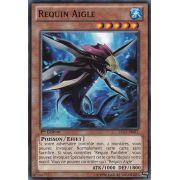 LTGY-FR011 Requin Aigle Commune