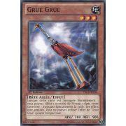 YS13-FRV06 Grue Grue Commune
