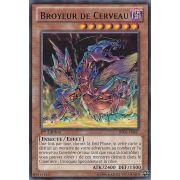 BP02-FR047 Broyeur de Cerveau Rare