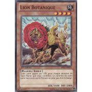 BP02-FR074 Lion Botanique Commune
