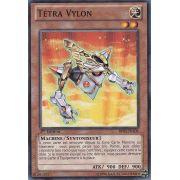 BP02-FR106 Tétra Vylon Commune