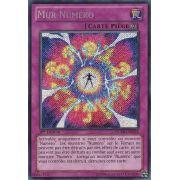 NUMH-FR058 Mur Numéro Secret Rare