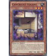 JOTL-FR039 Cancrelat Volant Short Print