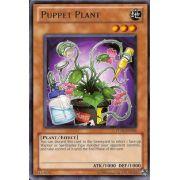 TU05-EN006 Puppet Plant Rare