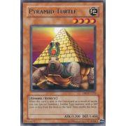 DB2-EN225 Pyramid Turtle Rare