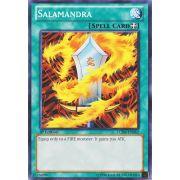 LCJW-EN062 Salamandra Commune