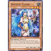 LCJW-EN239 Shadow Tamer Rare