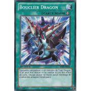 SHSP-FR061 Bouclier Dragon Commune