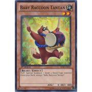 SHSP-EN015 Baby Raccoon Tantan Commune