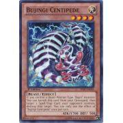 SHSP-EN026 Bujingi Centipede Commune