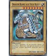 YSKR-FR001 Dragon Blanc aux Yeux Bleus Commune