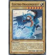 YSKR-FR012 Électro-Dragonqueue Commune