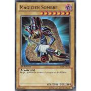 YSYR-FR001 Magicien Sombre Commune