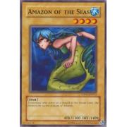 CP05-EN012 Amazon of the Seas Commune