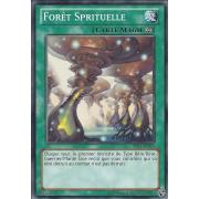 AP01-FR020 Forêt Sprituelle Commune