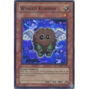 DR3-EN185 Winged Kuriboh Super Rare