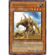 DR04-EN152 Sand Moth Rare