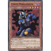 WGRT-FR008 Cyber Maraudeur Commune