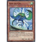 WGRT-FR042 Raie du Ciel Commune