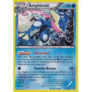 XY1_41/146 Amphinobi Holo Rare