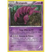 XY1_53/146 Brutapode Rare