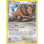 XY1_100/146 Tauros Rare