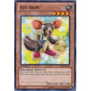 SP14-EN016 Aye-Iron Commune