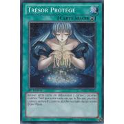 DRLG-FR013 Trésor Protégé Secret Rare