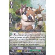 BT13/042EN Wash Up Raccoon Rare (R)