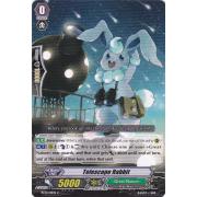 BT13/101EN Telescope Rabbit Commune (C)