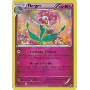 XY2_66/106 Florges Holo Rare