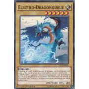 YS14-FR001 Électro-Dragonqueue Commune