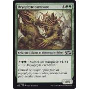 Bryophyte carnivore