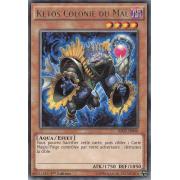 BP03-FR098 Ketos Colonie du Mal Rare