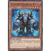 BP03-FR099 O'Lantern Colonie du Mal Commune