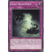 BP03-FR237 Chat Quantique Commune