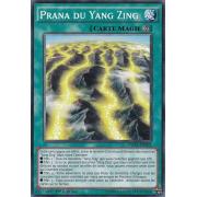DUEA-FR062 Prana du Yang Zing Commune