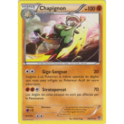 XY3_50/111 Chapignon Rare