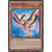 CT11-FR005 Bujingi Grue Super Rare