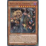 MP14-FR017 Roue de la Prophétie Rare