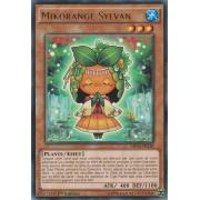MP14-FR238 Mikorange Sylvan Rare