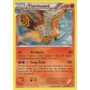 XY4_10/119 Flambusard Rare
