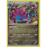 XY4_74/119 Trioxhydre Holo Rare